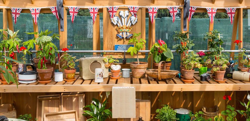 The interior of our heritage greenhouse range