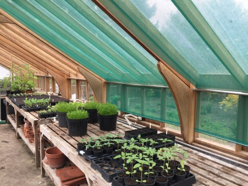 Blinds Fitted in a greenhouse