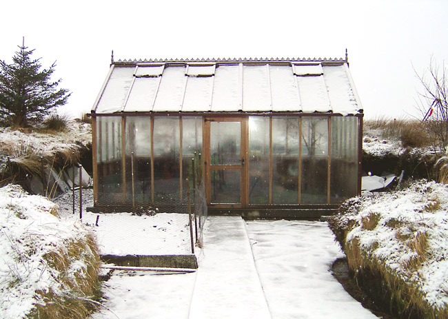 Woodpecker greenhouse survives the snow storm